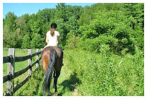 Teen Summer Horseback Riding Programs