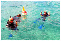 Group Teen Summer Scuba Diving Programs